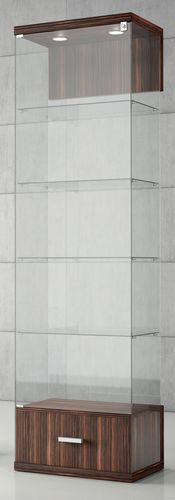 vitrina moderna / con pies / de vidrio / de madera