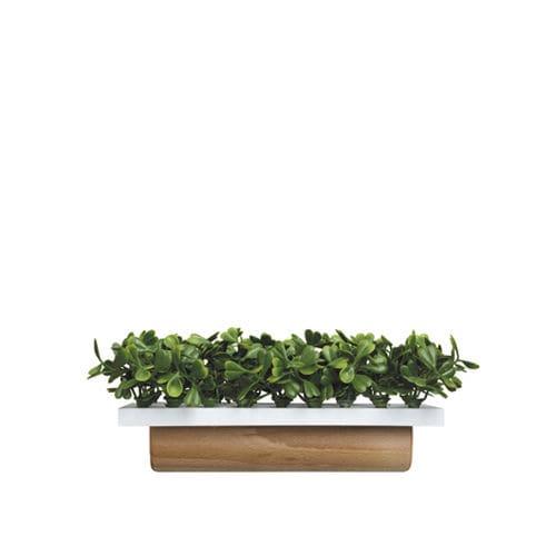 jardinera de madera / rectangular / contemporánea / para el sector servicios