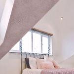 enlucido decorativo / de interior / para muro / de cal