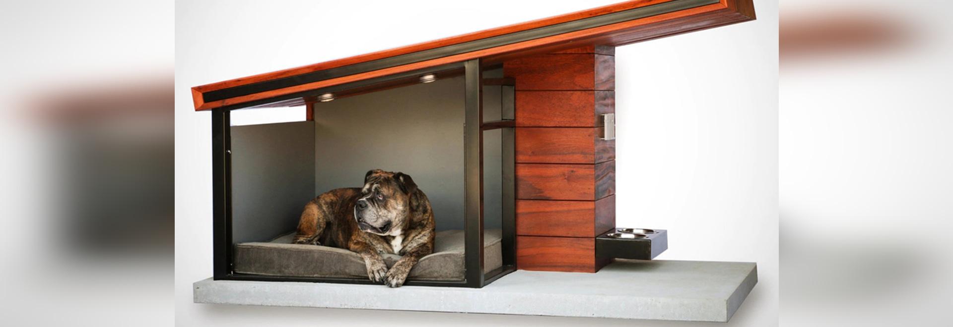 Rah Design mima a su perro con MDK9 Dog Haus