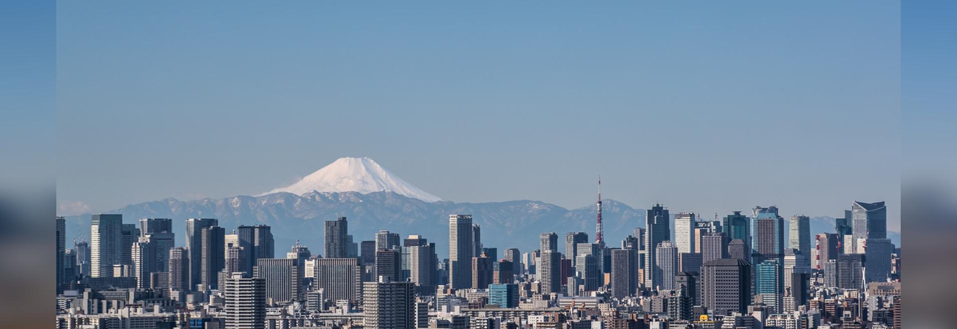 Vista de la ciudad de Tokio, el edificio del centro de Tokio y la torre de Tokio con la montaña Fuji en un día claro. La metrópolis de Tokio es la capital de Japón y una de sus 47 prefecturas.