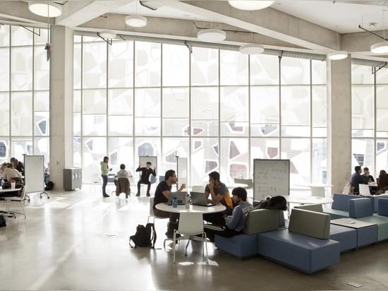 El diseño con visión de futuro promueve la colaboración con sus disposiciones abiertas del plan y zonas para sentarse informales. Fotografía: Lorne Bridgman