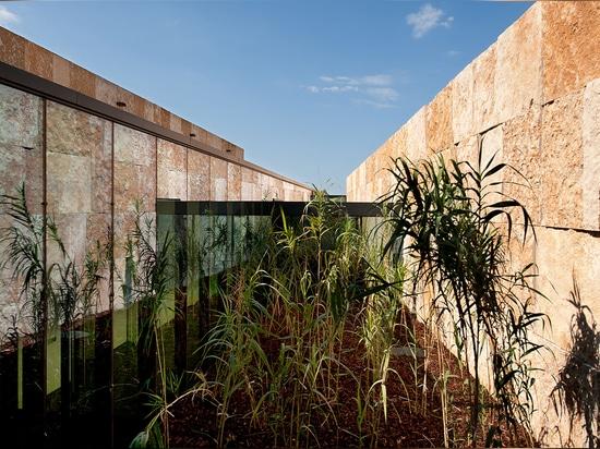 """Esta ruta también cruza un patio plantado, formando una """"""""promenade"""" interior"""" con una referencia sutil a un claustro. Fotografía: Lisa Ricciotti"""