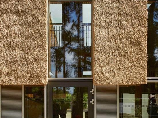 Morgan Sindall, CEO de Architype, la firma contratante para la construcción, propuso el uso de la paja de cubrir el edificio.