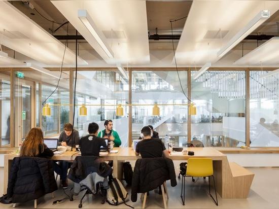 Universidad Rotterdam del edificio/Erasmus de Polak