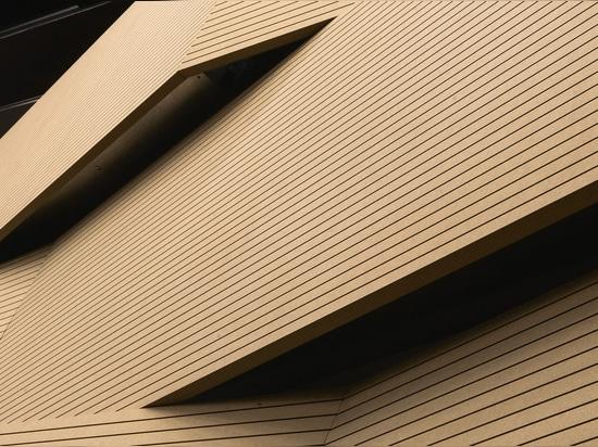 NUEVO: el panel de la absorción sana (imitación de madera) por Fantoni