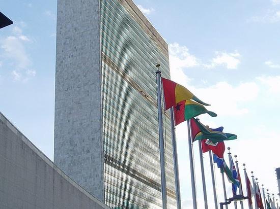 Butacas Figueras para la Asamblea General de la ONU en Nueva York