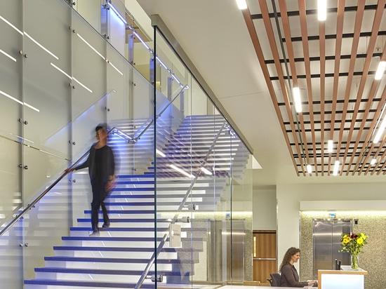 Diseño pensativo de la atención sanitaria con las tejas de Mosa