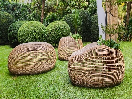 Binhi del experto Ito Kish del diseño interior