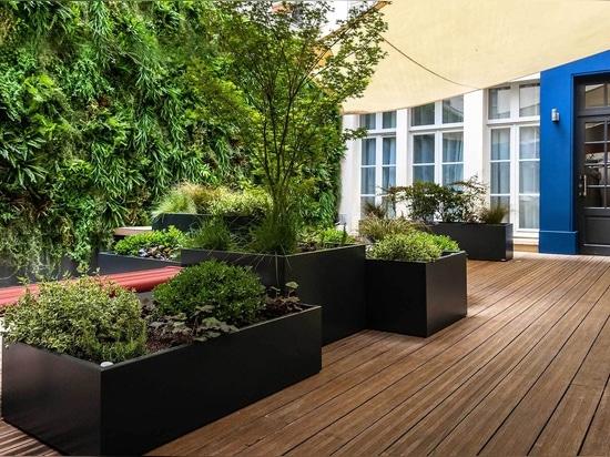 Composición vegetal para el hotel del prestigio con los plantadores hechos a medida de IMAGE'IN