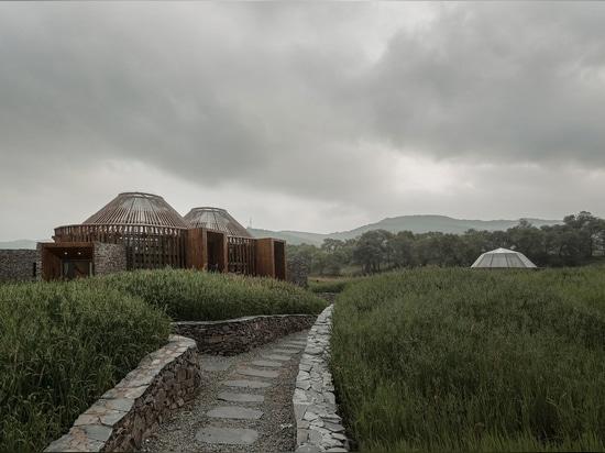 Centro/HDD de Mulan Weichang Vistor
