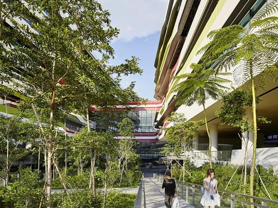 la vegetación natural impregna el campus