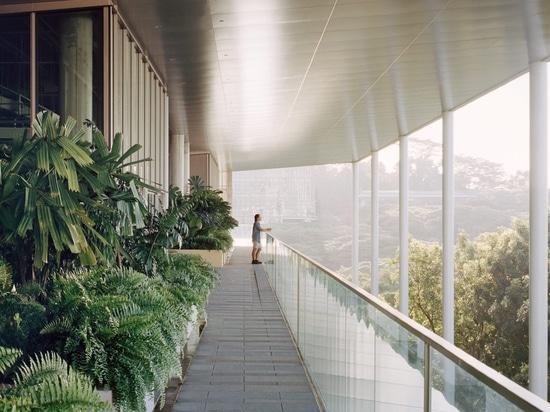 La universidad nacional del edificio del SDE4 de Singapur es un prototipo del diseño sostenible