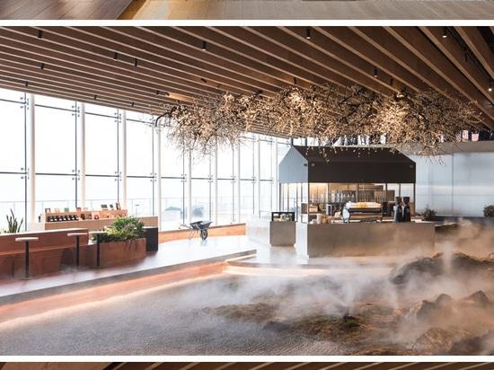 Un paisaje de rocas cubiertas de musgo rodea esta cafetería dentro de una librería