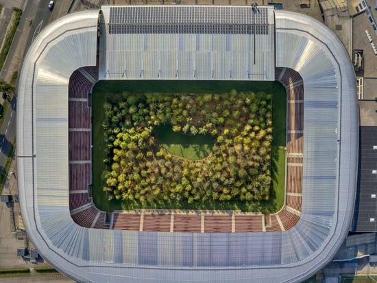 El Estadio Austriaco se Transforma en un Bosque Gigante