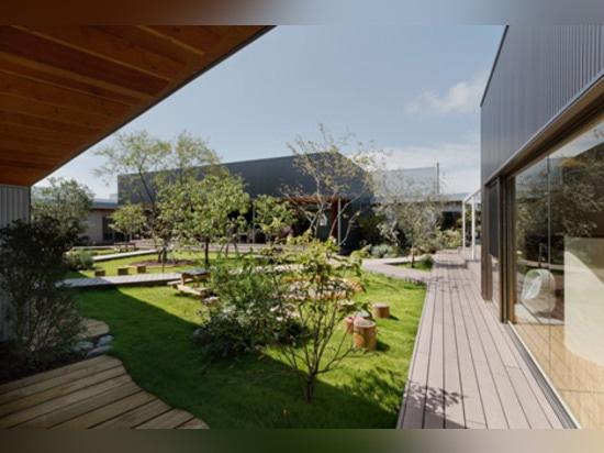 las salas de clase Luz-llenadas rodean un jardín del patio en el cuarto de niños del DS en Japón