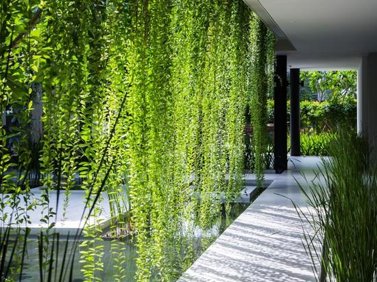 Este nuevo balneario del centro turístico se cubre en jardines de colgante
