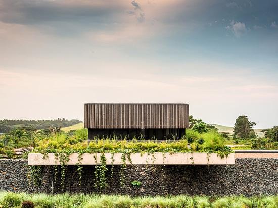 Bloc Architects completa un edificio de oficinas de baja altura con elementos básicos en Sudáfrica