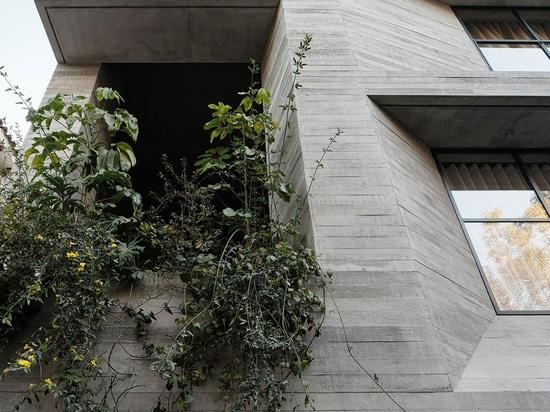El estudio Rick Joy combina el rigor brutalista con la finura escultórica en un edificio de apartamentos en la Ciudad de México