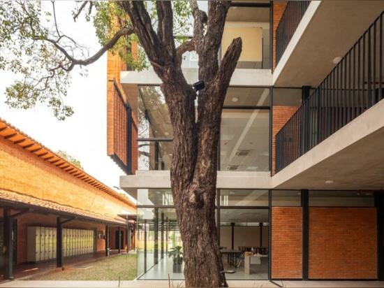 Una escuela ideal en Paraguay, con patios tropicales y materiales naturales