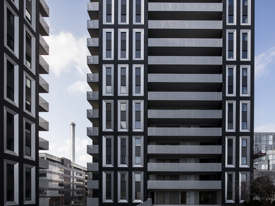 Compañeros de piso: un ejemplo contemporáneo de co-vivienda