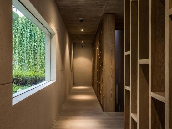 Las extensas plantas colgantes suavizan el uso del hormigón en este diseño de casas
