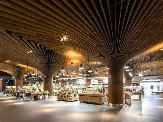 los arquitectos del takada del koichi apoyan la aldea del este de Sydney con las columnas tree-like de la madera