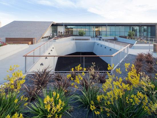 Diller Scofidio + Renfro termina el nuevo edificio del departamento de arte para la Universidad de Stanford
