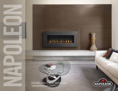 DISTINCT DIRECT VENT FIREPLACES