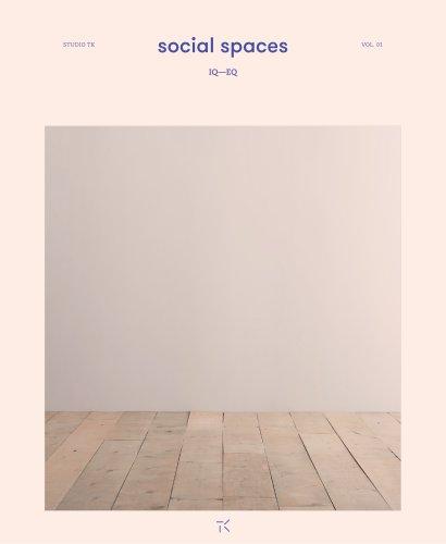 Social spaces IQ—EQ