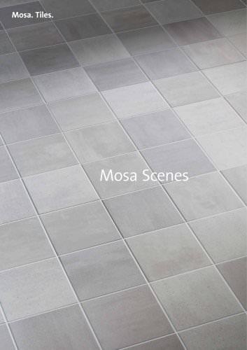 Mosa Scenes