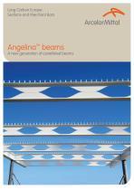 Angelina TM beams