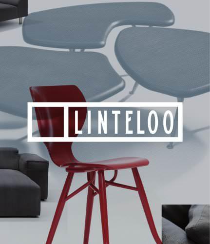 LINTELOO - Brochure 2012
