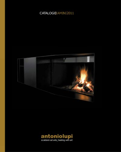 fireplace 2011