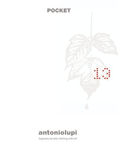 pocket 13