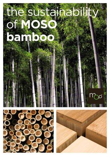 the sustainability of MOSO bamboo