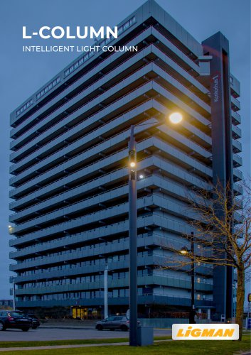 L-COLUMN Intelligent light columns
