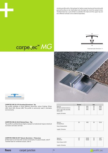 Carpetec MG