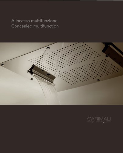 Concealed multifunction shower heads