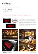 Platinum Gas